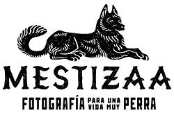 MESTIZAA
